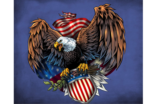 Army Eagle Decal Panel