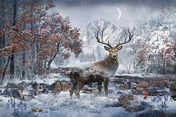 Call of the Wild Panel (Deer)