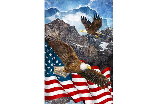 Bald Eagle & Flag - 28